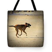 Playing Ball On The Beach  Tote Bag