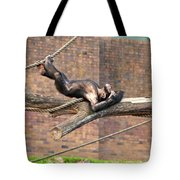 Playing Chimp I Tote Bag