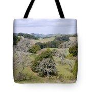 Pleasanton Ridge - North Tote Bag