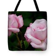 Pleasurable Pink Tote Bag