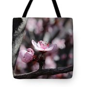 Plum Blossoms 9 Tote Bag