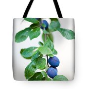 Plum Tree Tote Bag