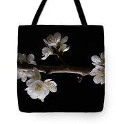 Plum Tree Spring Blossum Tote Bag