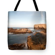 Point Lobos Number Three Tote Bag by Catherine Lau
