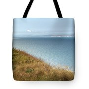 Point To The Polar Bear Tote Bag