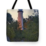 Pointe Aux Barques Lighthouse 7072 Tote Bag