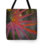 Pointedly Tote Bag