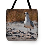 Poised Seagull Tote Bag