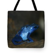 Poisonous Blue Frog 03 Tote Bag