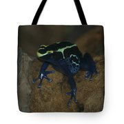 Poisonous Frog 01 Tote Bag