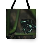 Poisonous Green Frog 04 Tote Bag