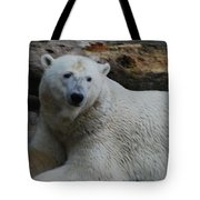 Polar Bear 1 Tote Bag