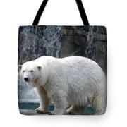 Polar Bear 2 Tote Bag