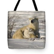 Polar Bear With Cub, Watchee Tote Bag