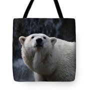 Polar Bear With Waterfall Tote Bag