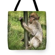 Pole Dancing Macaque Style Tote Bag