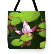 Polish Beauty Tote Bag