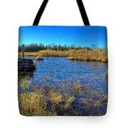 Pond 1 Today.psd Tote Bag