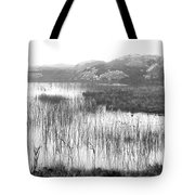 Pond In Tha North Of Ireland Tote Bag