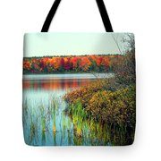 Pond In The Woods In Autumn Tote Bag