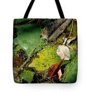 Pond Lumens Tote Bag