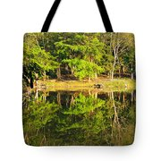 Pond Reflection Guatemala Tote Bag