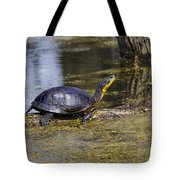 Pond Turtle Basking In The Sun Tote Bag
