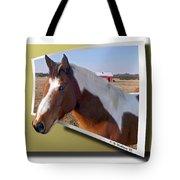 Pony Posing Tote Bag