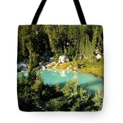 Pool In The Forest Tote Bag