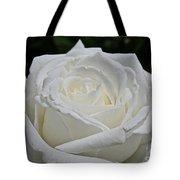 Pope's Rose Tote Bag