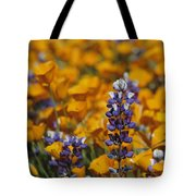 Poppies And Lupine Flowers In A Santa Tote Bag