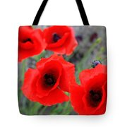 Poppies Of Stone Tote Bag by Empty Wall