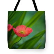 Poppies Vibrance Tote Bag