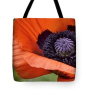 Poppy For Peace Tote Bag