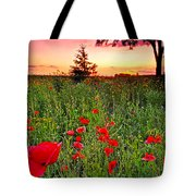 Poppy Patch And Previsualization Tote Bag