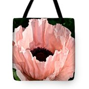 Poppy Pink Tote Bag