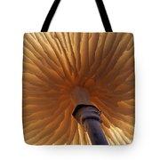 Porcelain Mushroom Oudemansiella Mucida Tote Bag