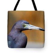 Portait Of A Little Blue Heron Tote Bag