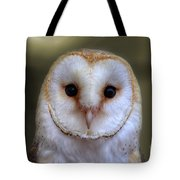 Portrait Of A Barn Owl Tote Bag