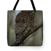 Portrait Of A Barred Owl Perched Tote Bag