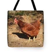 Portrait Of A Chicken Tote Bag