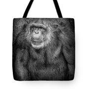 Portrait Of A Chimpanzee Tote Bag