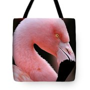 Portrait Of A Flamingo Tote Bag