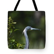 Portrait Of A Heron Tote Bag
