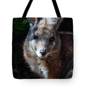 Portrait Of A Wallaby Tote Bag
