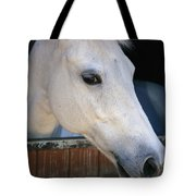 Portrait Of A White Horse Looking Tote Bag