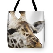 Portrait Of African Giraffe Tote Bag