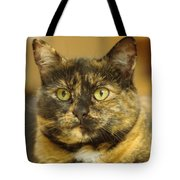 Portrait Of Ginny Tote Bag