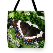 Posing Butterfly Tote Bag