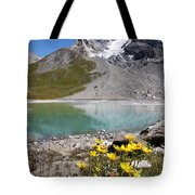 Postcard From Alpes Tote Bag